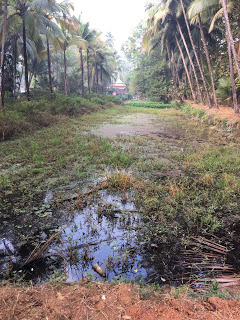 mangeshi-lake-before