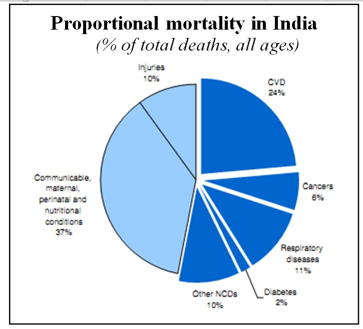 communicable diseases in india Infectious disease outbreaks in india- challenges and opportunities  one of the main challenges for surveillance of infectious diseases in india is lack of reporting from the private healthcare sector, which delivers healthcare to more than 75% of the population it is imperative to incorporate the private health sector in disease.